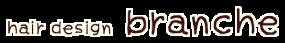 hair-design-branche